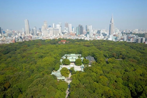 Meiji Jingu from the air