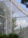 HGF Glass chandelier