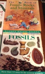 ISBN 0-7534-5274; 1-85028-262-5